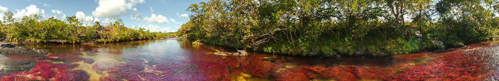 Caño Cristales Tour Package